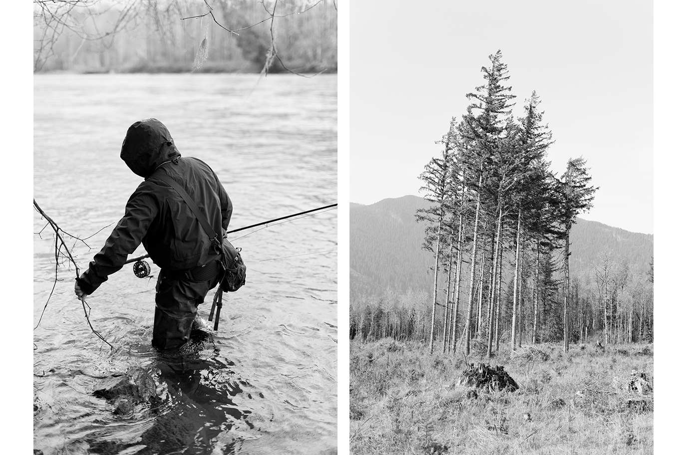 steelhead, flyfishing, pacific northwest, washington state